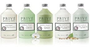 Prive Products Professional Quality Salon Hair Care